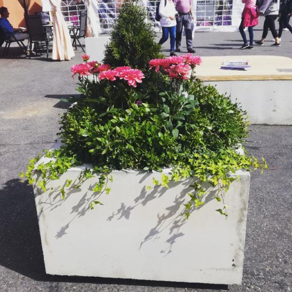 Blomsterklossen